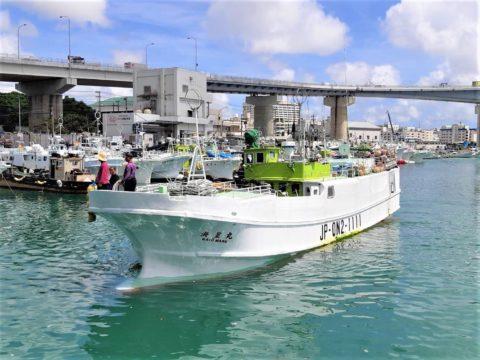 まぐろ漁船団